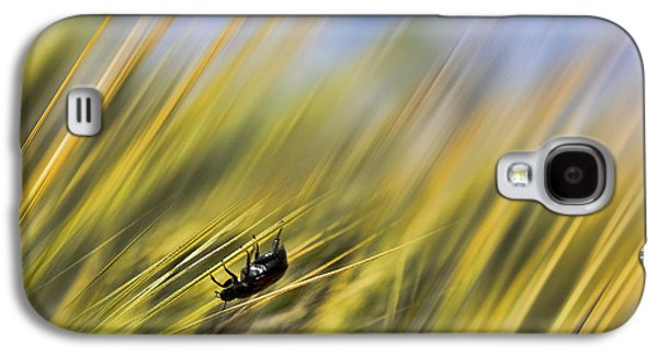 Abstract Digital Galaxy S4 Cases - Abstract Beatle Galaxy S4 Case by SK Pfphotography