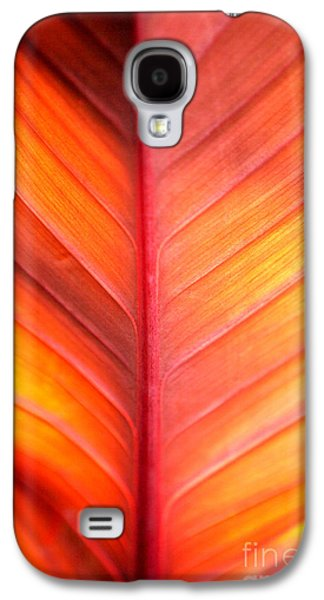 Business Galaxy S4 Cases - Abstract Galaxy S4 Case by Tony Cordoza