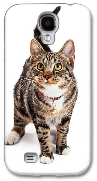 Adorable Photographs Galaxy S4 Cases - Adorable Bengal Cat With Attentive Expression Galaxy S4 Case by Susan  Schmitz