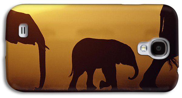 Animals and Earth - Galaxy S4 Cases - African Elephant Loxodonta Africana Galaxy S4 Case by Karl Ammann