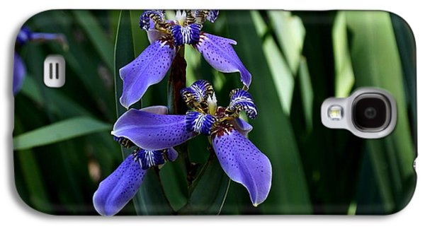 Landscapes Photographs Galaxy S4 Cases - African Iris Galaxy S4 Case by John Trommer
