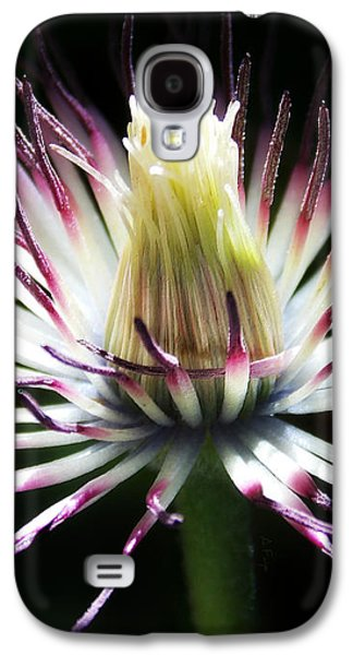 After The Petals Are Gone Galaxy S4 Case by Anita Faye