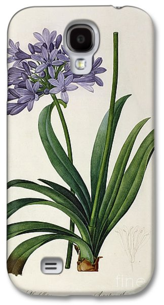 Purple Paintings Galaxy S4 Cases - Agapanthus umbrellatus Galaxy S4 Case by Pierre Redoute