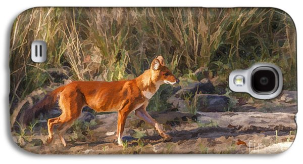 Dogs Digital Art Galaxy S4 Cases - Alert Dhole Cuon alpinus Kanha National Park India Galaxy S4 Case by Liz Leyden