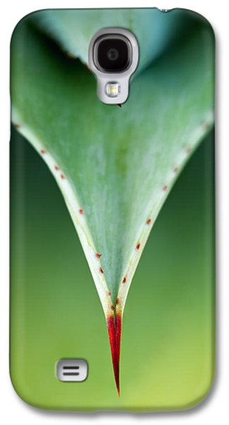 Nature Abstract Galaxy S4 Cases - Aloe thorn and leaf macro Galaxy S4 Case by Johan Swanepoel