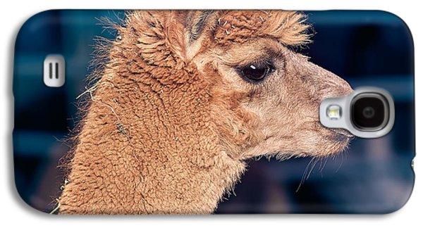 Alpaca Wants To Meet You Galaxy S4 Case by TC Morgan