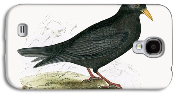 Alpine Chough Galaxy S4 Case by English School