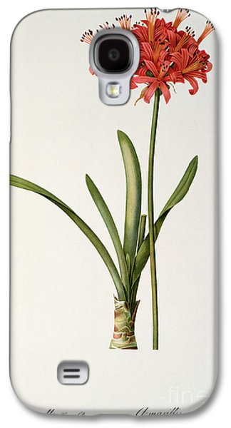 19th Galaxy S4 Cases - Amaryllis Curvifolia Galaxy S4 Case by Pierre Redoute