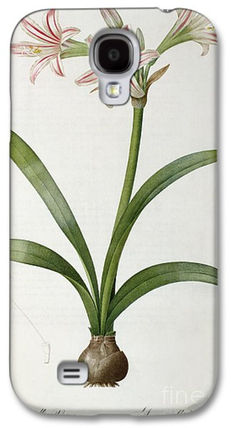 19th Galaxy S4 Cases - Amaryllis Vittata Galaxy S4 Case by Pierre Redoute