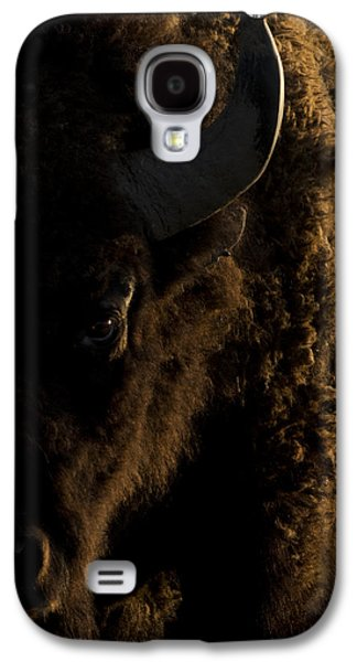 Bison Galaxy S4 Cases - American Bison Sunrise Galaxy S4 Case by Noah Bryant