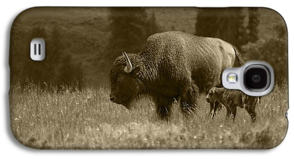 American Buffalo Bison Mother And Calf In Sepia Tone Galaxy S4 Case by Randall Nyhof