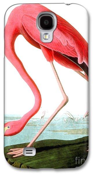 American Flamingo Galaxy S4 Case by John James Audubon
