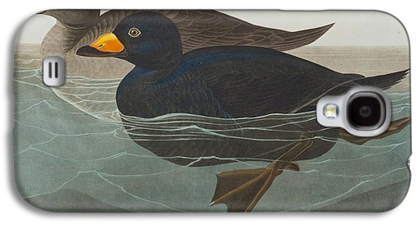 Americans Drawings Galaxy S4 Cases - American Scoter Duck Galaxy S4 Case by John James Audubon