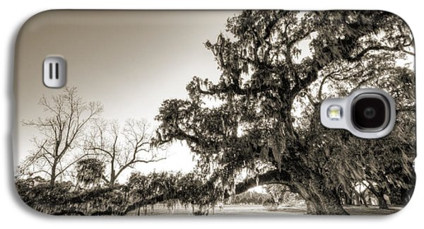 Ancient Galaxy S4 Cases - Ancient Live Oak Tree Galaxy S4 Case by Dustin K Ryan