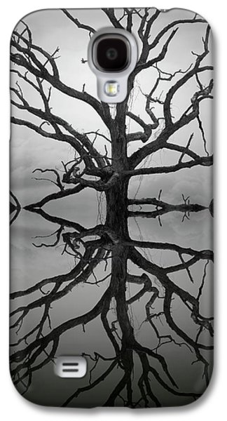Contemplative Photographs Galaxy S4 Cases - Ancient Oak Tree Montage Galaxy S4 Case by Dave Gordon