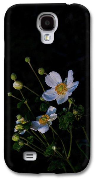 Animation Photographs Galaxy S4 Cases - Anemone At Sunrise Galaxy S4 Case by Douglas Barnett