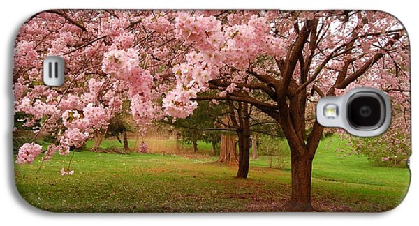 Cherry Blossoms Photographs Galaxy S4 Cases - Approach Me - Holmdel Park Galaxy S4 Case by Angie Tirado