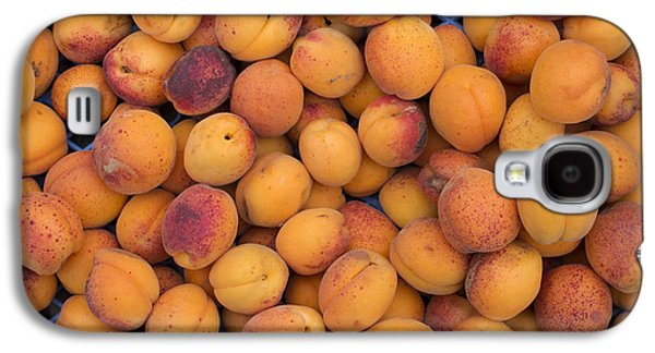 Rosaceae Galaxy S4 Cases - Apricot Moorpark Harvest Galaxy S4 Case by Tim Gainey