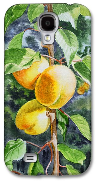 Harvest Art Galaxy S4 Cases - Apricots in the Garden Galaxy S4 Case by Irina Sztukowski