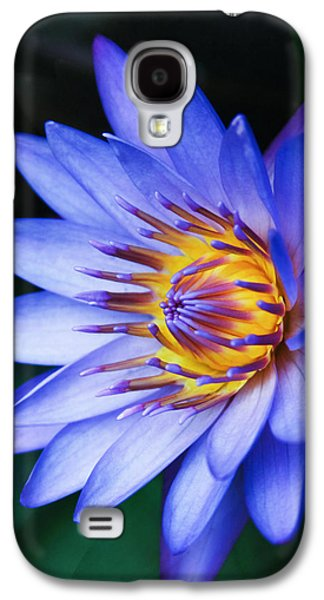 Healing Posters Galaxy S4 Cases - Tropical Dreams Galaxy S4 Case by Sharon Mau