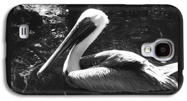 Waterscape Galaxy S4 Cases - Bold Pelican Galaxy S4 Case by Sharon Nelson-Bianco