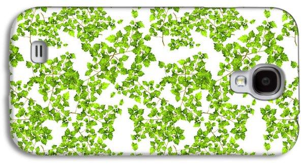 Hawthorn Pressed Leaf Art Galaxy S4 Case by Christina Rollo