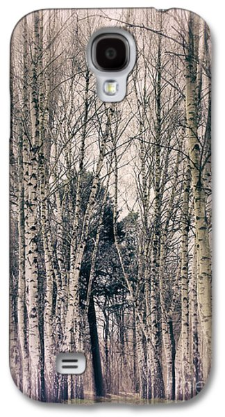 Abstract Digital Galaxy S4 Cases - Ast Birch Galaxy S4 Case by SK Pfphotography