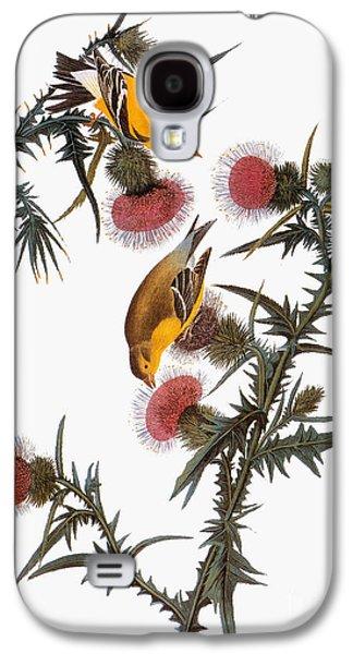 Audubon: Goldfinch Galaxy S4 Case by Granger