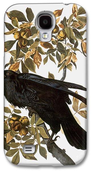 Audubon: Raven Galaxy S4 Case by Granger