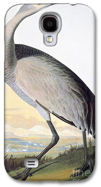 Audubon: Sandhill Crane Galaxy S4 Case by Granger