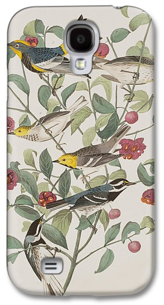 Audubons Warbler Hermit Warbler Black-throated Gray Warbler Galaxy S4 Case by John James Audubon