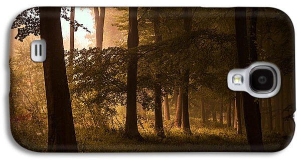 Landscapes Photographs Galaxy S4 Cases - Autumn Forest Galaxy S4 Case by Ian Hufton