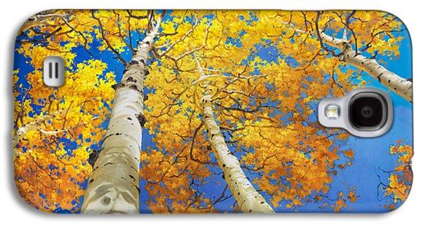 Autumn Aspen Canopy Galaxy S4 Case by Gary Kim