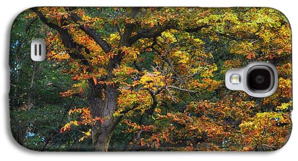 Landscapes Photographs Galaxy S4 Cases - Autumn day Galaxy S4 Case by SK Pfphotography