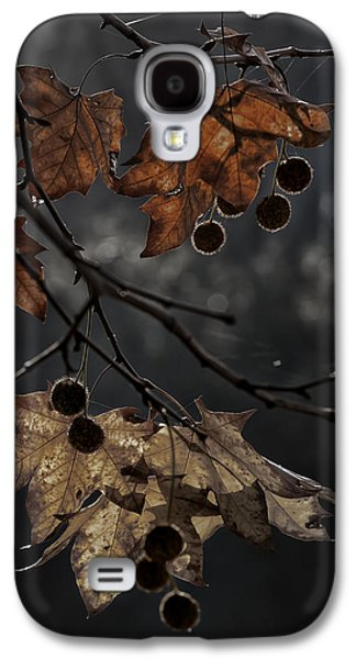 Photographs Galaxy S4 Cases - Autumn Galaxy S4 Case by Edgar Laureano