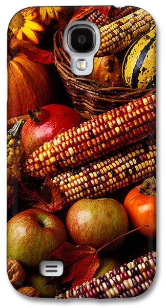 Apple Photographs Galaxy S4 Cases - Autumn harvest  Galaxy S4 Case by Garry Gay