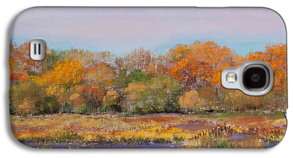Autumn Landscape Pastels Galaxy S4 Cases - Autumn in the Adirondack Mountains Galaxy S4 Case by David Patterson