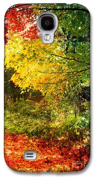 Change Paintings Galaxy S4 Cases - Autumn in Vermont Galaxy S4 Case by Mindy Sommers