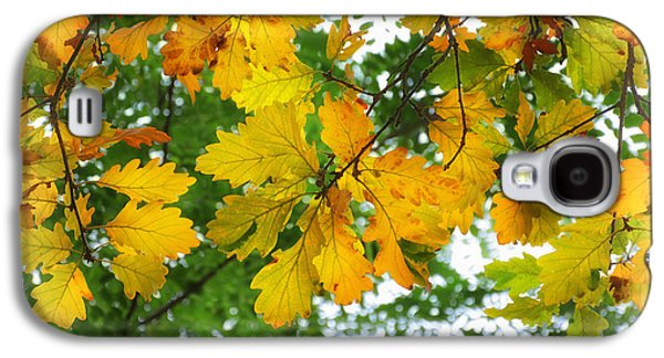 Landscapes Photographs Galaxy S4 Cases - Autumn in yellow Galaxy S4 Case by SK Pfphotography