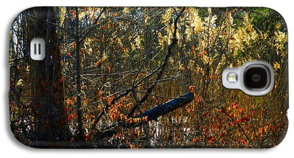 Indiana Scenes Galaxy S4 Cases - Autumn on the Sough Galaxy S4 Case by Julie Dant