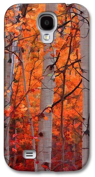 Autumn Splendor Galaxy S4 Case by Don Schwartz