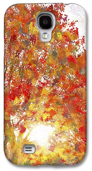 Nature Abstract Galaxy S4 Cases - Autumn Sunset 2 - West Valley City Utah Galaxy S4 Case by Steve Ohlsen