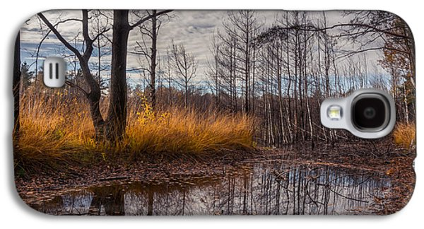 Autumn Swamp Galaxy S4 Case by Dmytro Korol