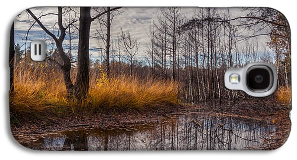 Mud Season Galaxy S4 Cases - Autumn Swamp Galaxy S4 Case by Dmytro Korol
