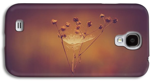 Autumn Web Galaxy S4 Case by Shane Holsclaw