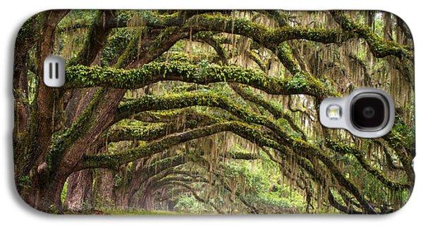Avenue Of Oaks - Charleston Sc Plantation Live Oak Trees Forest Landscape Galaxy S4 Case by Dave Allen
