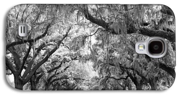 Avenue Of Oaks Charleston South Carolina Galaxy S4 Case by Stephanie McDowell