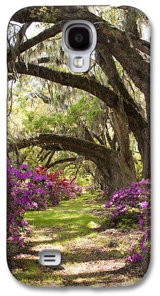 Live Oaks Galaxy S4 Cases - Azaleas and Live Oaks at Magnolia Plantation Gardens Galaxy S4 Case by Dustin K Ryan