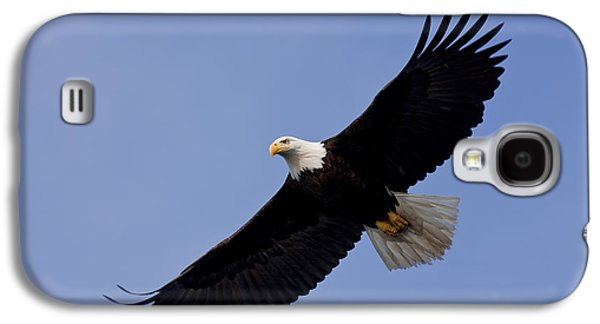 Bald Eagle In Flight Galaxy S4 Case by John Hyde - Printscapes