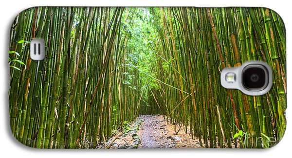 Bamboo Galaxy S4 Cases - Bamboo Forest Trail Hana Maui 2 Galaxy S4 Case by Dustin K Ryan